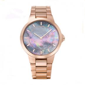 Stainless steel quartz watches